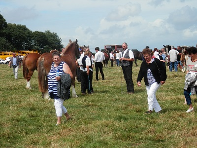 manifestation-amicale-des-associations-ferreennes-concours-departemental-cheval-breton